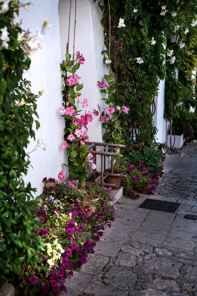 Alberobello 27